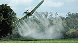 Manufacture of Pesticides - AR