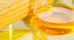 Refining of Vegetable Oils for Biofuels - AR